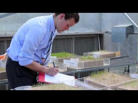 University of Sydney graduate career profile: Haydn Valle, Research Economist