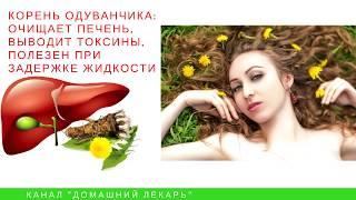 Одуванчик для похудения - Домашний лекарь - выпуск №43