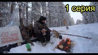 В тайгу на целый день. Охота. Чаёк на природе. Собаки умирают от усталости. 1 серия.