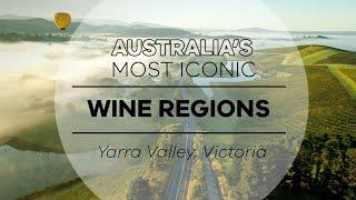 Explore Australia's iconic Yarra Valley wine region