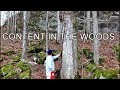 Logging Walnut for Furniture and Timber Frame Components