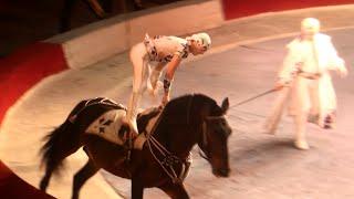 Circus. Acrobats on tne horses.  Цирк. Акробаты на лошадях.