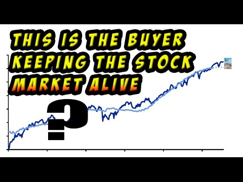 The #1 Reason Why the Stock Market Hasn't Crashed Yet Despite Panic Selloff!