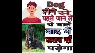 Dog Lene se pehle Jan l y baatein  in hindi VT unlimited information