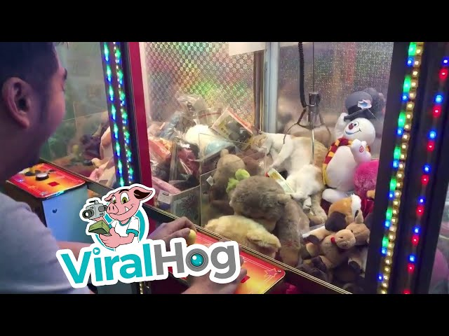 Cat Stuck in a Claw Machine || Viralhog