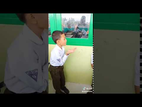 Anjing Kacili Tik Tok Viral Terbaru 2018