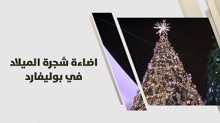 اضاءة شجرة الميلاد في بوليفارد