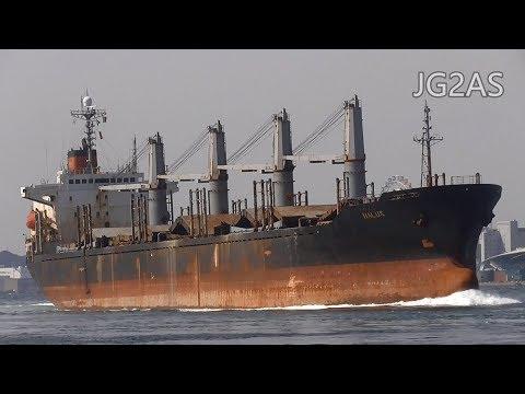 HALUS バラ積み船 Bulk carrier 2018-MAR