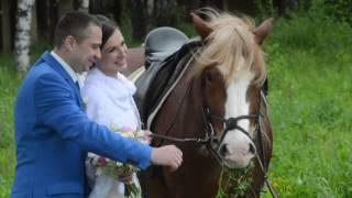 С Днем Свадьбы Ольга и Евгений 04 06 16