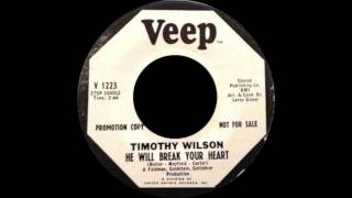 Timothy Wilson - He Will Break Your Heart