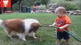 Приколы с детьми и животными