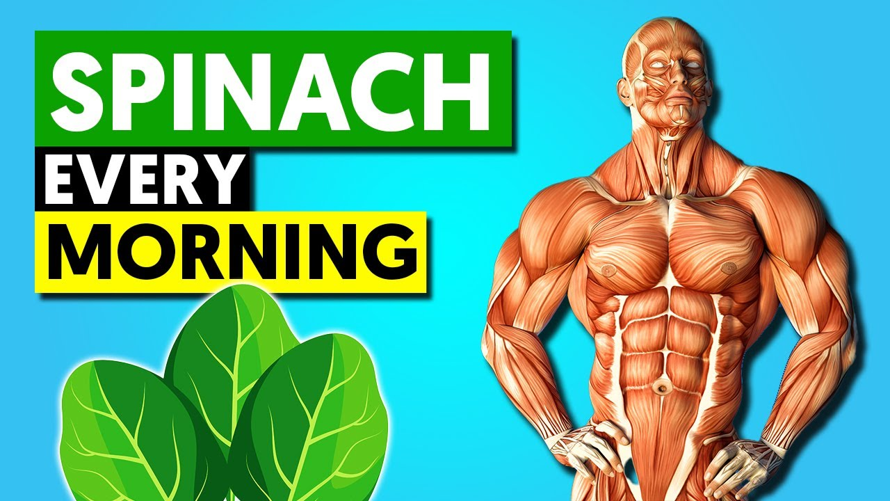 Add Spinach to your Breakfast Every Morning and See what happens