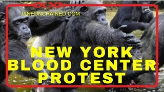 Protest against New York Blood Center Sparks Mayhem at NYBC Gala!