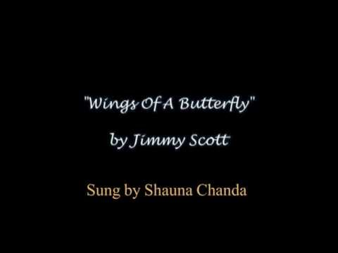 """""""Wings Of A Butterfly"""" Beautiful song for lost loved ones, female vocal w/lyrics"""