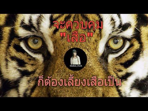 ถ้ามีลูกน้องเก่งเหมือนเสือ คุณต้องเลี้ยงเสือเป็น