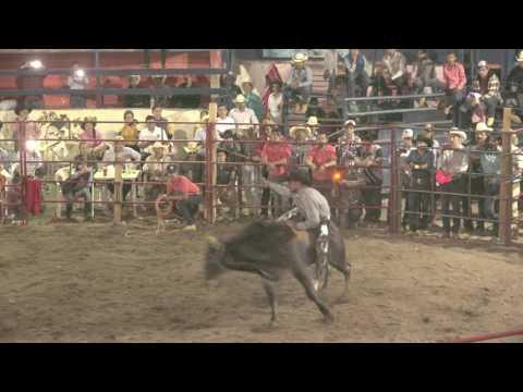 destructores en hacienda acayapan duendecillo vs gorrion de nayarit C0098