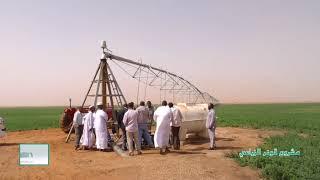 İNCİ GONAR AGRİCULTURAL SHANDI SUDAN