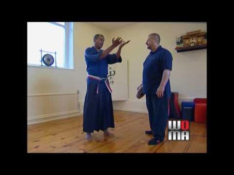 Goju Ryu KARATE Chris Rowen Hard & Soft Techniques