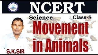 #Movement in #Animals (जानवरों का चलना) #NCERT