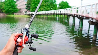 Catching GIANT Bass While POND Fishing
