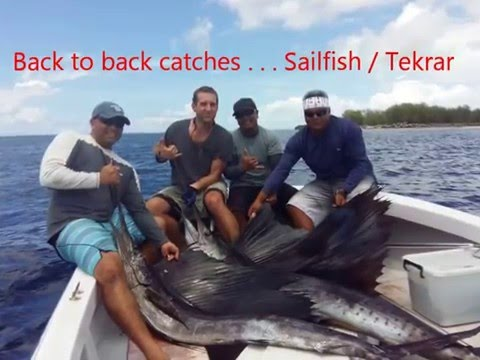 2016 Palau Fishing: Back-to-Back Sailfish