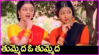 Venkatesh Super Hit Song With Bhanu Priya And Gowthami In Telugu | Srinivasa Kalyanam
