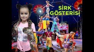 Sirke Gittik / Akrobatik Sirk Ve Gösteri / Circus Show