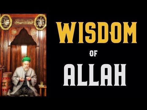 Wisdom of Allah [ENGLISH VERSION]