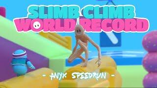 Fall Guys: Slimb Climb World Record Speedrun