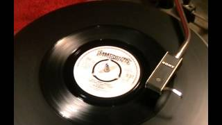 The McCoys - Don't Worry Mother, Your Son's Heart Is Pure - 1966 45rpm