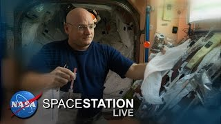 Space Station Live: Science of the Gut