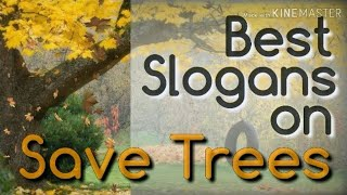 28 Best Slogans on SAVE TREES (Save Trees, Save Earth) in English