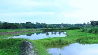 Download Video KOPOTAKKHO NOD কপোতাক্ষ নদ by sajal MP3 3GP MP4
