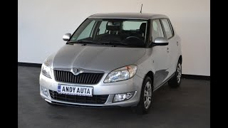 Video prohlídka: Škoda Fabia 1.6 TDi Aut.Klima Záruka - 2014 - 19026