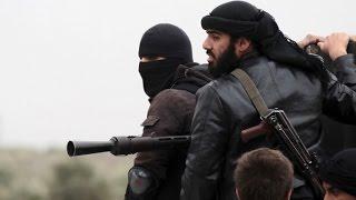 Кризис в Сирии: ООН призвала Совбез к действиям  (новости)