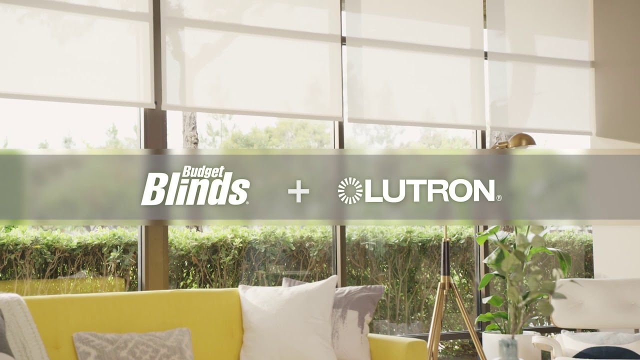 budget pid selectblinds cid from blinds miniblinds inch aluminum complaints signature com