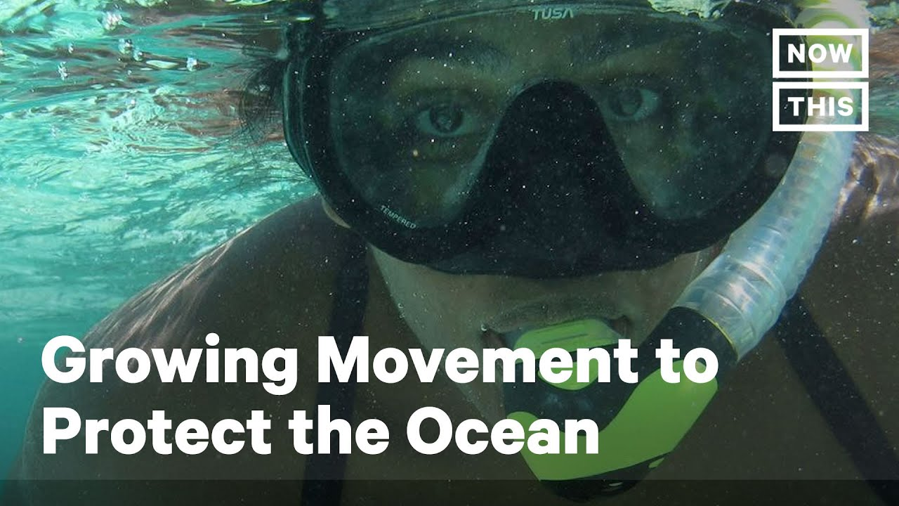 Fisher Diversifies Efforts to Protect 30% of the Ocean by 2030