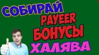 🔴Раздача Payeer бонусов, payeer на халяву