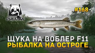Щука на Воблер F11. Рыбалка на Остроге - Русская Рыбалка 4 #168