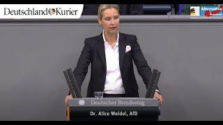 Alice Weidel: Diese Verfassungsänderung ist ein massiver Angriff in die Grund- und Freiheitsrechte
