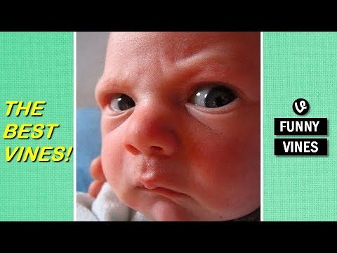 MAD KIDS and BABIES that will make you LAUGH - Funny BABY and KID compilation
