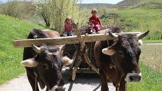 Muhteşem Türküler.... Çok özel köy görüntüleri....Muhteşem Uzun Havalar...