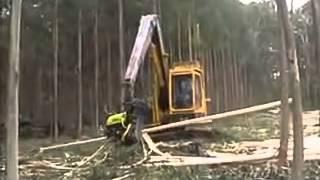 पेड़ को काटने वाली आधुनिक मशीन।