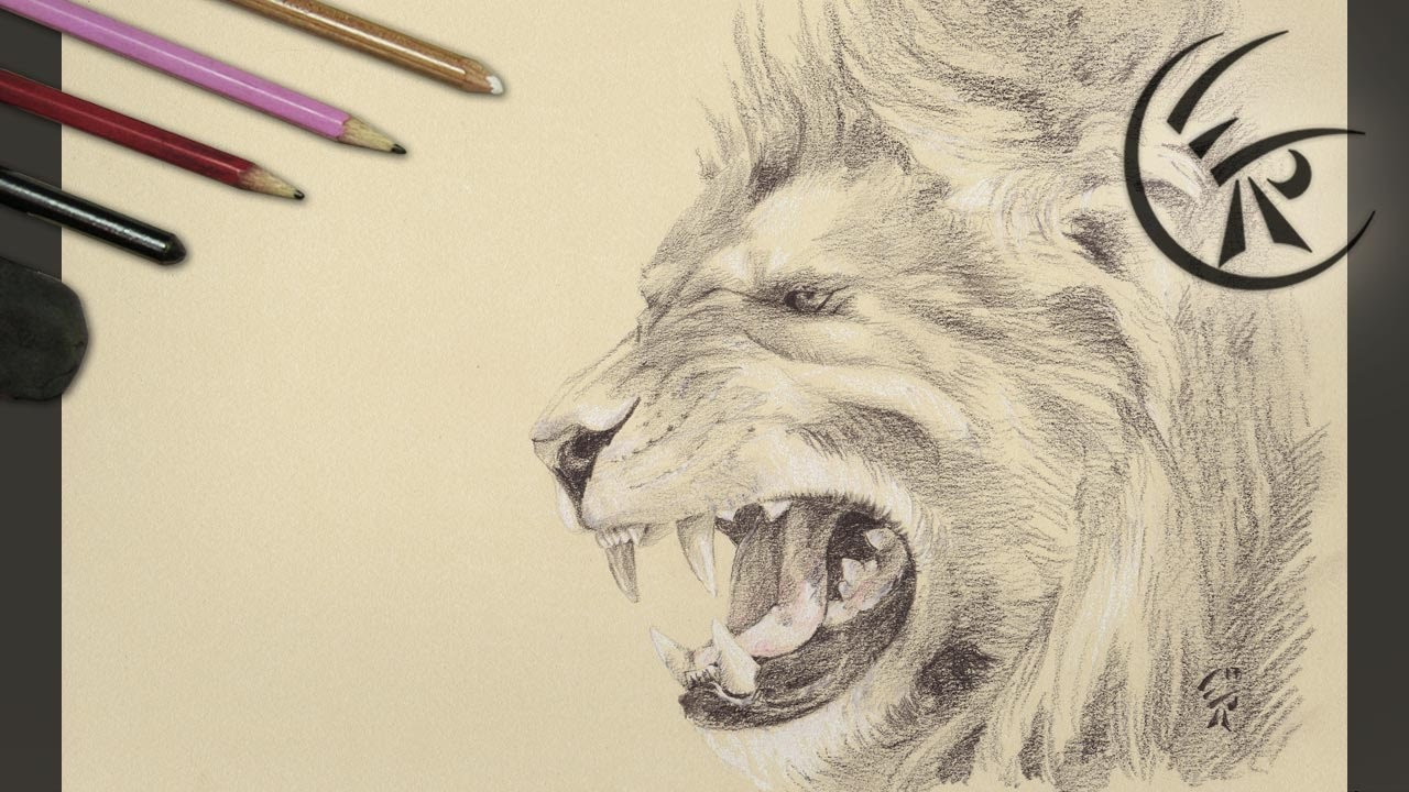 Drawing Roaring Lion Timelapse Youtube Polish your personal project or design with these lion drawing transparent png images, make it even more personalized and more attractive. drawing roaring lion timelapse