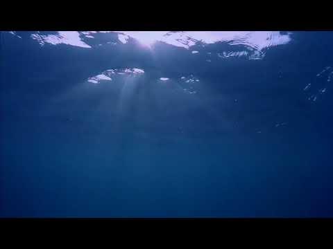 Τρομακτικές ιστορίες:Ο λόγος που φοβάμαι το νερό