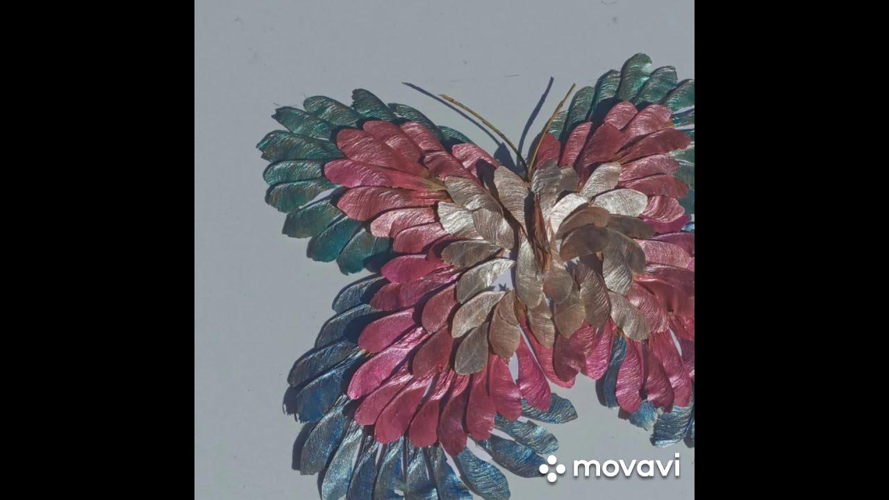 Бабочка из семян клена от ПДО Масановой Г.О. ДДТ Костанайского р-на Костанайской обл.