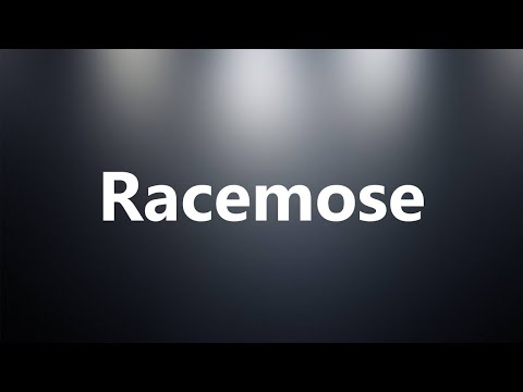 Racemose - Medical Definition and Pronunciation