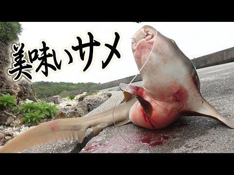 打ち込み竿を回収したらサメが!?[宮古GT狙い 6/6]