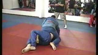 Nelumbo Ryu Jujitsu