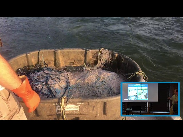 Active Gill Netting for Asian Carp